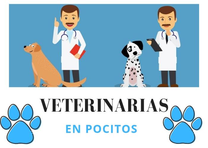veterinarias en pocitos